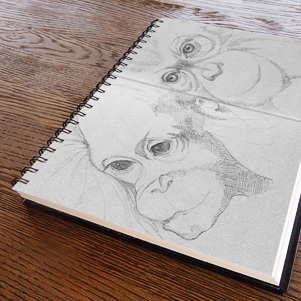 Monkeys sketch